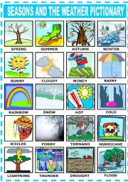 English Worksheet: SEASONS AND THE WEATHER - PICTIONARY