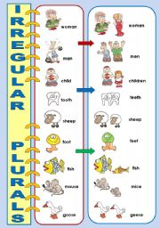 IRREGULAR PLURALS - CLASSROOM POSTER (OR A FLASH-CARD)