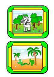 Habitat Cards (3/8) - animals