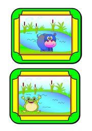 Habitat cards (4/8) - animals
