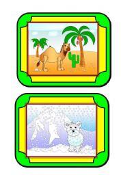 English Worksheet: Habitat cards (5/8) - animals