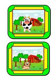 Habitat cards (7/8) - animals