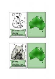 English Worksheets: Australian Animal cards 1