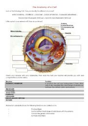 Printables Biology Worksheets english teaching worksheets biology the anatomy of a cell