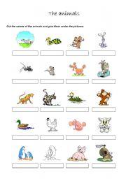English Worksheets: Animals 1/2