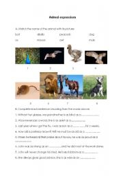 English Worksheets: Animal expressions