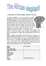 English Worksheets: The African elephant