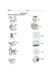 English Worksheet: Animal Homes