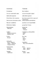 English Worksheets: invertebrates