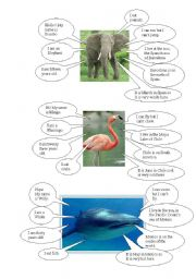English Worksheets: presentation of animals