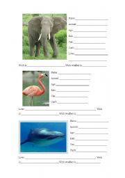 English Worksheets: Fill in the gaps
