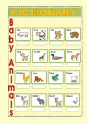 English Worksheets: Baby Animals 2