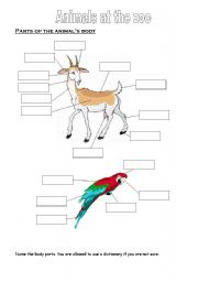 English Worksheets: Parts of the animal�s body