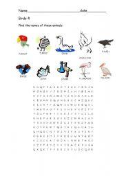 English Worksheets: Birds 4