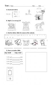 English Worksheets: Test: animals, actions, descriptions