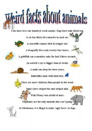 English Worksheet: Weird Facts About Animals