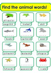 English Worksheet: animals(3/3)