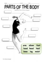 English Worksheets: Parts of the body (2 / 5 / 09)