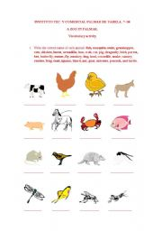 English Worksheets: animals in context