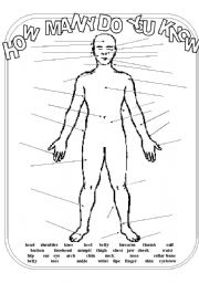 English Worksheets: Lable the body (Updated)