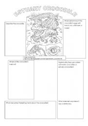English Worksheets: Crocodile Reading Comprehension