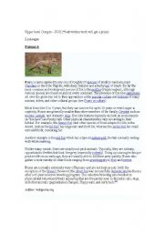 English Worksheets: Comprehension Topic On Foxes