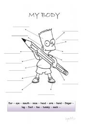 English Worksheets: Bart�s body