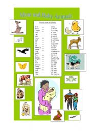 English Worksheets: Baby and mom Animals