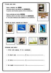 English Worksheets: Carnivorous and herbivorous animals