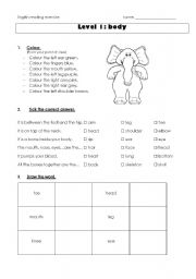 English Worksheets: Reading exercise body