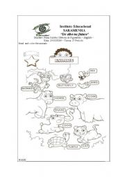 English Worksheets: the animals