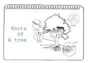 English Worksheet: Parts of a tree I