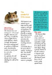English Worksheets: The hamster