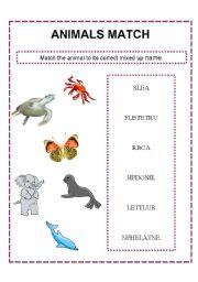 English Worksheets: Animal match