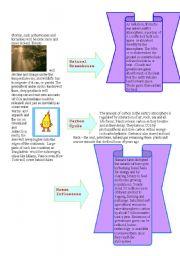 english worksheets greenhouse effect second part. Black Bedroom Furniture Sets. Home Design Ideas