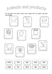 English Worksheets: ANIMALS AND THEIR PRODUCTS