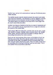 English worksheet: starfish