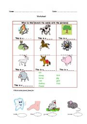 English worksheet: Animals and other words