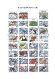 English Worksheet: A MEMORY GAME-BIRDS