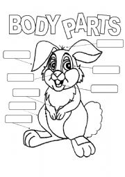 English Worksheets: Lable the parts of the bunny