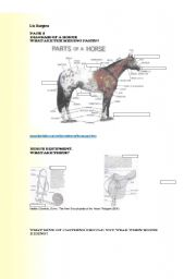 English Worksheet: Horses Part 1