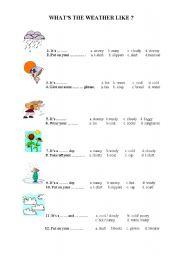 ESL kids worksheets: Weather Conditions Test