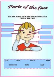 English Worksheets: Parts of the face...USE THE WORDS FROM THE BOX TO LABEL EACH PART.