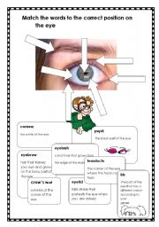 English Worksheets: The Eyes have it!