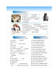 English Worksheet: much many - some any