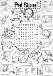 English Worksheets: wordsearch PET STORE
