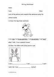English Worksheets: Colouring Animals