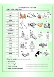 English Worksheets: Vocabulary Matching Worksheet - SEA ANIMALS