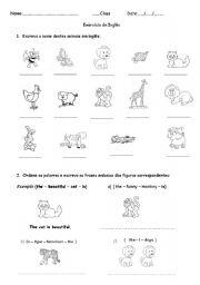 English Worksheets: Exercises on animals