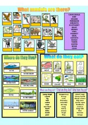 English Worksheet: Describing animals 1/2
